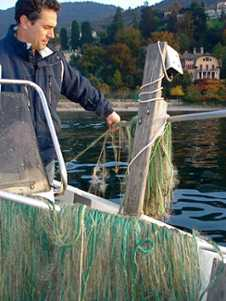 Lake Como Fishing