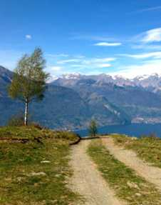 Dervio Mountain Bike Trail