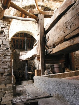 Image relating to Giant Wine Press (Il Torchio) #2