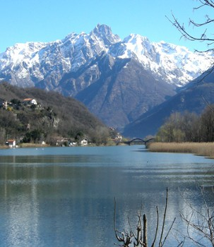 Image relating to Spagna-Lago di Mezzola Nature Reserve #6