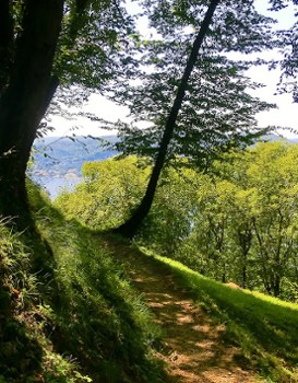Image relating to Hiking Montepiatto #2