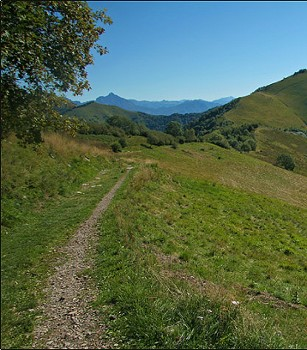 Image relating to Hiking Monte Palanzone #4