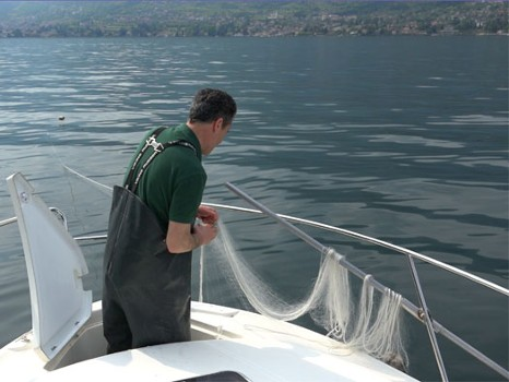 Image relating to Lake Como Fishing #10