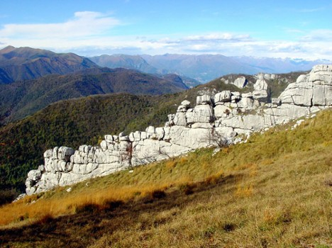 Image relating to Sasso Malascarpa Natural Reserve #6