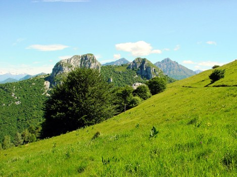 Image relating to Sasso Malascarpa Natural Reserve #4