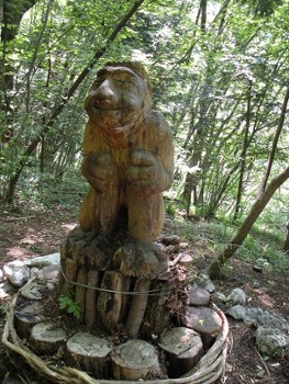 Image relating to Spirit of the Woods Trail #8