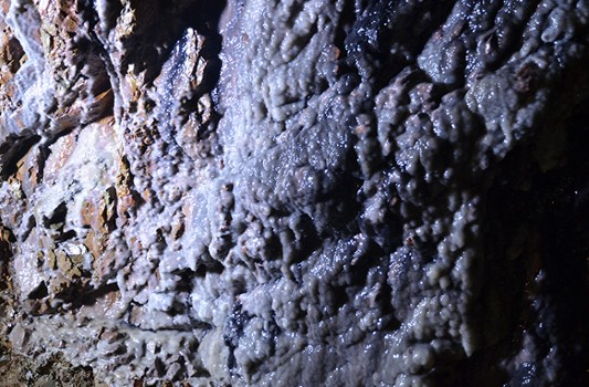 Image relating to Parco Minerario #8