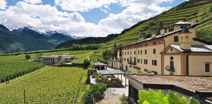Image relating to Valtellina Winery (Day Trip) #1