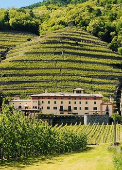 Image relating to Valtellina Winery (Day Trip) #0