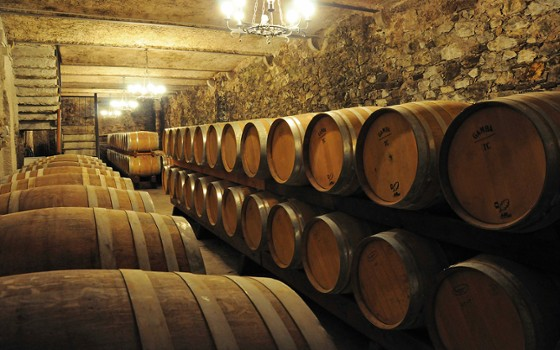 Image relating to Valtellina Winery (Day Trip) #3