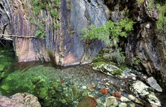 Image relating to Breggia Gorge Park #7