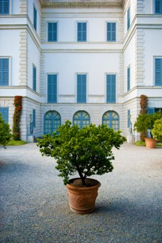 Image relating to Villa Melzi Gardens #15