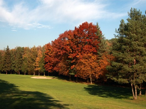 Image relating to La Pinetina Golf Club #8