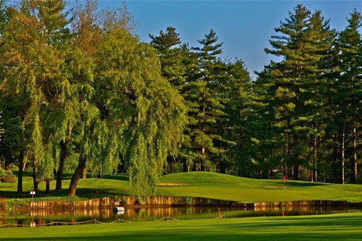 Image relating to La Pinetina Golf Club #12
